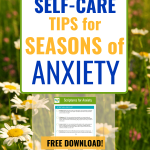 text on daisies in field - 5 Self-care Tips to Deal with Your Anxiety