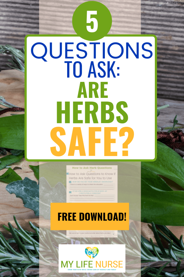 basil - 5 questions to ask: are herbs safe?