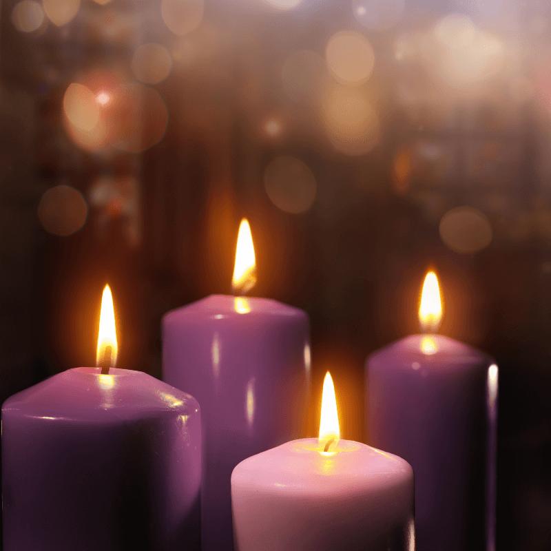 4 purple Advent candles